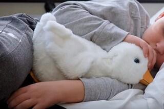 Aflac Duck, l'anatra che aiuta i bambini malati di cancro: come funziona