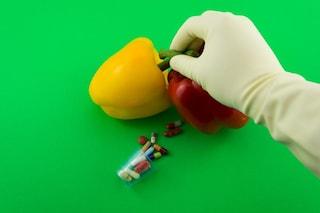 """Non tutti gli """"OGM"""" che produciamo sono vietati in Europa"""