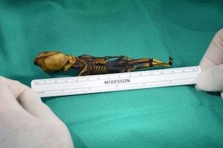 Il mistero dello scheletro 'alieno' di Ata svelato dopo 15 anni di dubbi