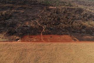 Le immagini della distruzione di Chaco: per la nostra carne, uccidiamo animali e persone