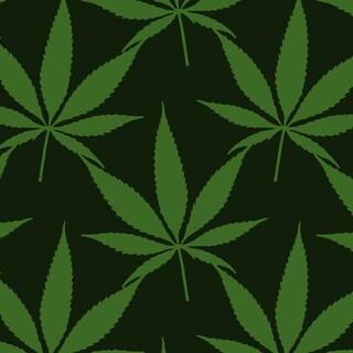 L'Oms ha davvero annunciato che la cannabis è del tutto sicura?