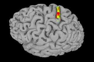 Uomo paralizzato che non sentiva più nulla riscopre il tatto con elettrodi nel cervello
