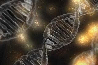 È nato l'Atlante genetico dei tumori che rivoluzionerà le terapie contro il cancro
