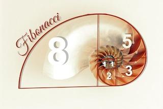 Cos'è la successione di Fibonacci e cosa c'entra con la riproduzione dei conigli