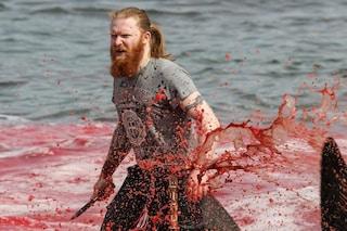 Strage di cetacei alle isole Faroe: 150 globicefali uccisi a coltellate