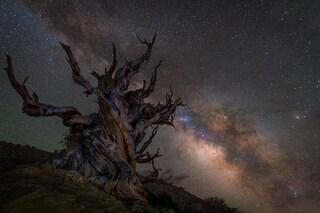 Le fotografie astronomiche più belle dell'anno: valtzer di nebulose, galassie e stelle