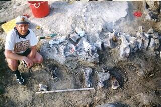 Il vero Bigfoot era un dinosauro: il suo piede è il più grande mai trovato