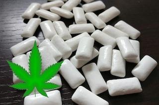 Gomma da masticare a base di cannabis per combattere sclerosi multipla e fibromialgia
