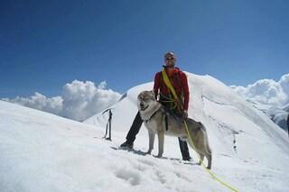 Nepal, il cane alpinista raggiunge 4mila metri d'altezza: ha scalato il Monte Rosa
