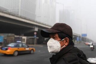 Lo smog 'annebbia' la mente e ci rende più stupidi