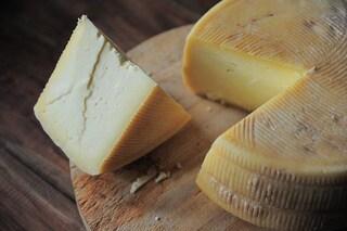Il formaggio più antico del Mediterraneo trovato in ceramiche del Neolitico: ha 7.200 anni