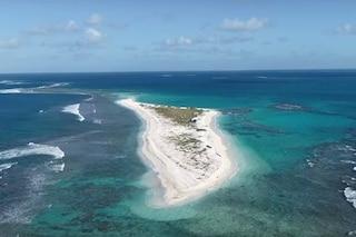 Addio a East Island, paradiso della biodiversità cancellato per sempre da un uragano