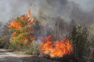 Incendi devastanti in Europa entro il 2099: i cambiamenti climatici alimentano le fiamme