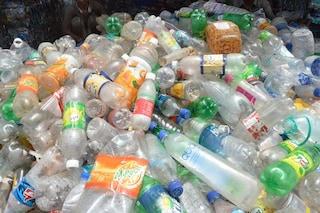 """Addio plastica monouso al ministero dell'Ambiente, da oggi prende il via """"Plastic free"""""""