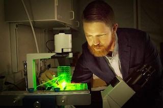 Primi legamenti, tendini e dischi spinali stampati in 3D: ottenuti da staminali del grasso