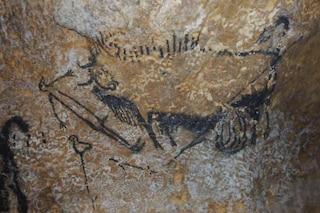 Astronomia: gli animali nelle caverne preistoriche sono in realtà costellazioni e comete