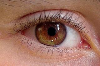 Settimana Mondiale del Glaucoma: visite gratuite in tutta Italia, ecco dove e perché