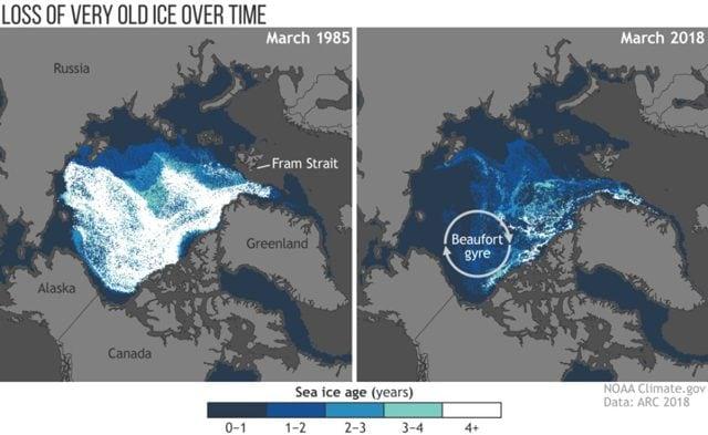 L'impietoso confronto tra il ghiaccio rilevato nel 1985 e quello nel 2018 Credit: NOAA