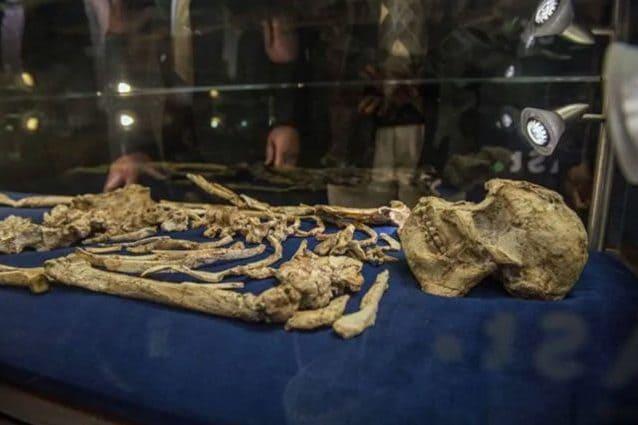 Qual è il modo di datare fossili sito di incontri disponibile