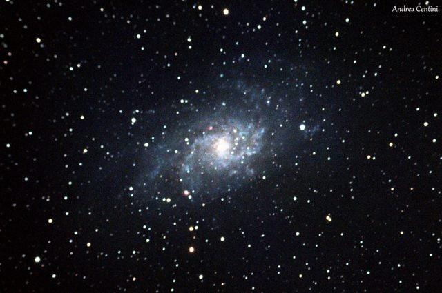 Immagine amatoriale della Galassia del Triangolo. Credit: Andrea Centini
