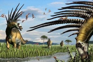 Bajadasaurus pronuspinax, l'assurdo dinosauro collo lungo con una spettacolare cresta spinosa
