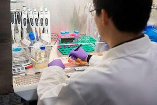 Raffiche di ioni calcio uccidono le cellule tumorali resistenti alla chemio: speranze per cura