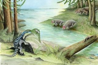 """Raro fossile di un 'cugino' dei dinosauri trovato al Polo Sud: chi era il """"re antartico"""""""