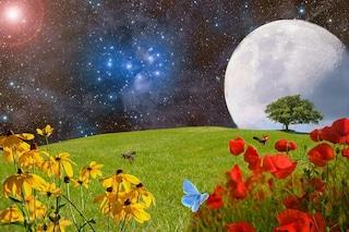 La Superluna di Primavera è l'ultima dell'anno: quando e come vedere lo spettacolo nel cielo