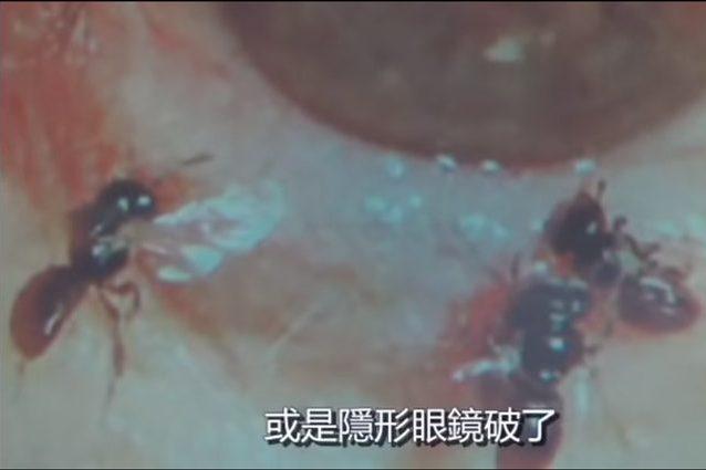 Credit: youtube/蘋果新聞網