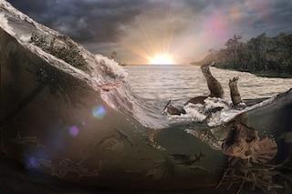 Cimitero di massa causato dall'asteroide che fece estinguere i dinosauri scoperto negli USA