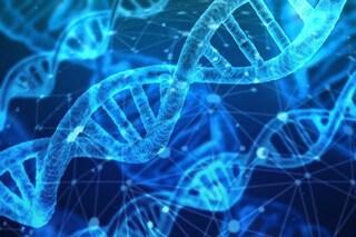 Malattia polmonare letale prevenuta per la prima volta grazie a editing genetico in utero