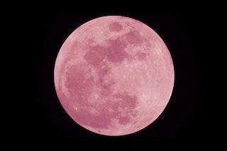 La Luna Rosa splende nel cielo di aprile: quando vederla e perché si chiama così
