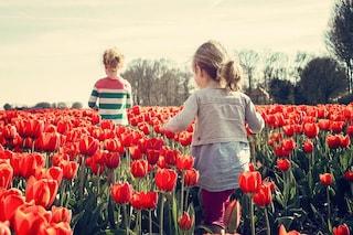 Vivere a contatto con la natura da bambini migliora la salute mentale da adulti