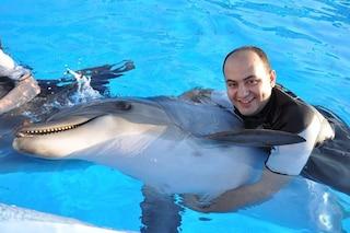 Nuoto con i delfini, sentenza lo vieta in Italia: ecco perché è un'ottima notizia