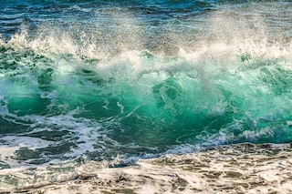 Batteri che respirano arsenico emergono dall'Oceano Pacifico: perché sono importanti