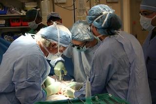 Il primo trapianto di utero in Italia eseguito a Catania su una trentenne: orgoglio nazionale
