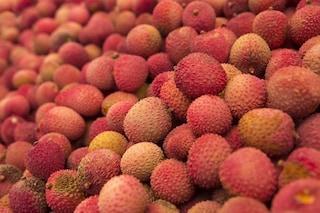 Cos'è l'encefalopatia ipoglicemica da litchi, la malattia mortale causata dal saporito frutto