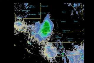 """Strano """"fenomeno atmosferico"""" rivelato dai radar: era un gigantesco sciame di coccinelle"""