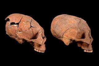 Misteriosi teschi allungati di migliaia di anni emergono da tombe cinesi