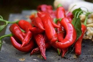 I peperoncini saranno i primi frutti coltivati dalla NASA sulla ISS: ecco perché