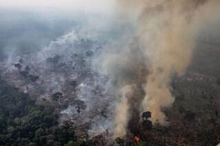 L'Amazzonia non produce il 20% dell'ossigeno, ma gli incendi sono comunque una catastrofe immensa