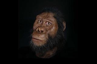 Ricostruito il volto del più antico antenato dell'uomo: le immagini straordinarie