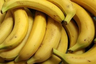 Le banane rischiano di sparire: il fungo che devasta le coltivazioni è arrivato in Sud America