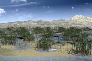 Ecco la più grande foresta fossile mai scoperta: era composta da alberi stranissimi