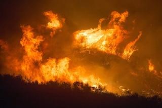 Amazzonia in fiamme, record d'incendi nella foresta pluviale: 83% in più del 2018