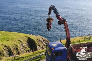 I resti dei cetacei massacrati alle isole Faroe gettati da una scogliera: orrore senza fine