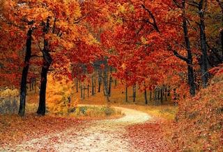 L'equinozio d'autunno 2019 bussa alla porta: è tempo di salutare l'estate