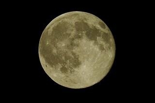 Tutto pronto per la Luna Piena del Raccolto di settembre: perché si chiama così