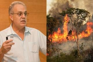 """Nobel Carlos Nobre: """"Entro 30 anni Amazzonia come la savana"""". Vicini a punto di non ritorno"""