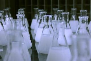Elisir di lunga vita aumenta la longevità dei moscerini del 48%: attesi test sull'uomo